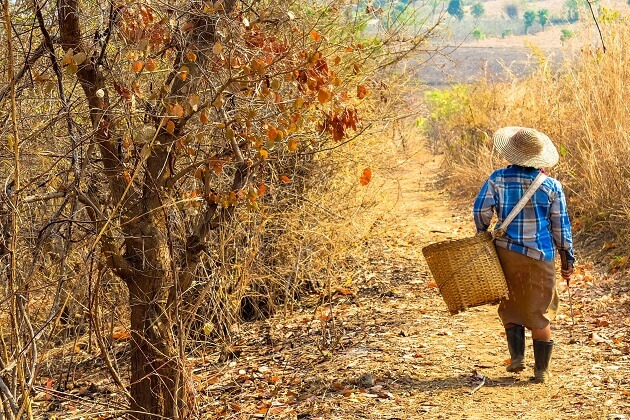 Autumn is the best time to visit Myanmar