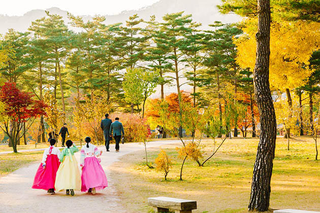 Autumn - best time to visit in asia