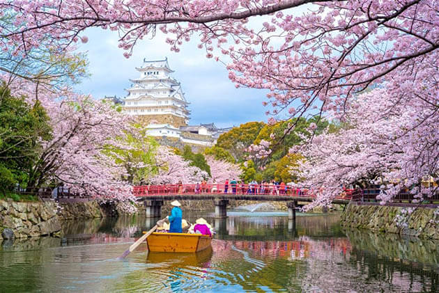 japan - best time to visit East Asia