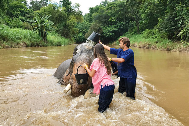 private elephant sanctuary - luxury tour in thailand